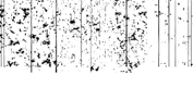 Saybrook Productions