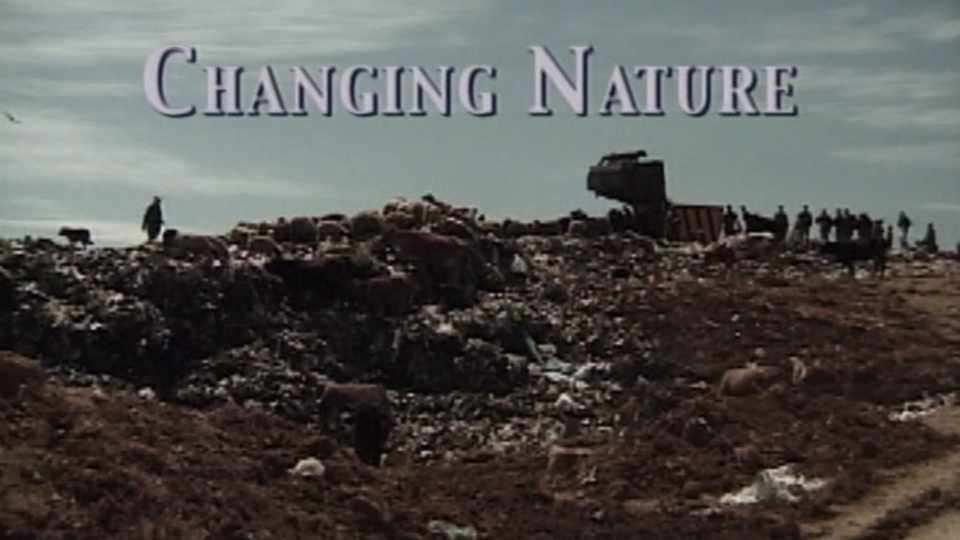 Changing Nature